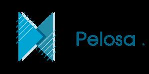 Pelosa-sponsor